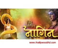 "dangal channel running tv serial "" fir laut aayi --nagin "" casting"