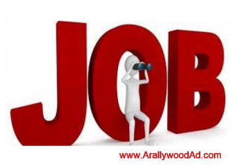 9992610575 Habitus hr solutions pvt.ltd Googal pay company  male and female can so apply  free job n